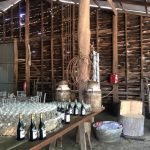 Wedding on Family Farm in Boyanup
